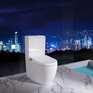 Hygiene toilet bidet seat